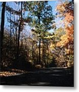 Country Road In Autumn Metal Print