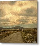 Country Road With Wildflowers Metal Print