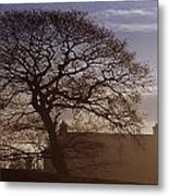 County Tyrone, Ireland Winter Morning Metal Print