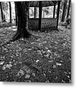 Covered Path Metal Print