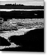 Covering The Marshes Metal Print
