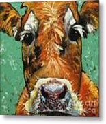 Cow 484 Metal Print