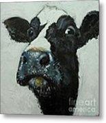 Cow 490 Metal Print