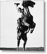 Cowboys, 1909 Metal Print