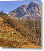 Cowhouse And Snow-capped Mountain Metal Print