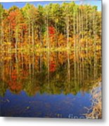 Coxsackie Reflection Metal Print