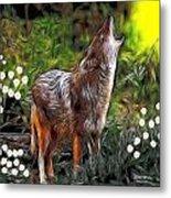 Coyote Howl Metal Print