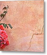 Cracked Wall And Rose Metal Print