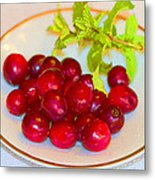 Cranberries And Mint Metal Print