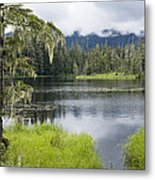 Crane Lake, Tongass National Forest Metal Print
