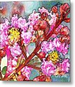 Crape Myrtle Blank Greeting Card Metal Print