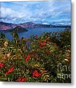 Crater Berries Metal Print
