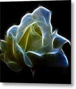 Cream Rose Metal Print