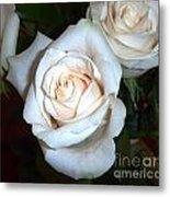 Creamy Roses IIi Metal Print