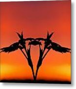 Creation 178 Metal Print