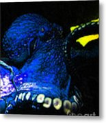 Creatures Of The Deep - The Octopus - V6 - Blue Metal Print by Wingsdomain Art and Photography