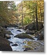 Creek Metal Print