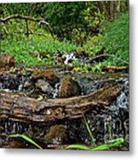 Creek End Metal Print