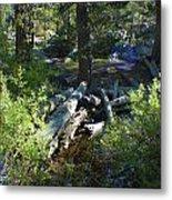 Creek In White Wolf Metal Print