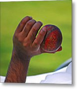 Cricket Anyone Metal Print