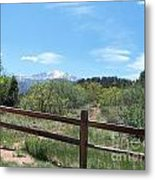 Crossing the Fence Metal Print