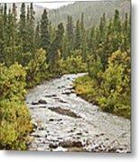 Crossing The Stream In Denali Metal Print