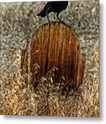 Crow On Old Wooden Grave Metal Print