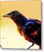 Crow Walk Metal Print