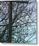 Crows And A Cross Metal Print