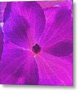 Crystelized Hydrangea Bloom Art Metal Print
