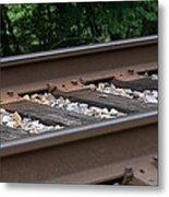 Csx Railroad Track Metal Print