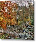 Cunningham Falls Viewing Platforms Metal Print