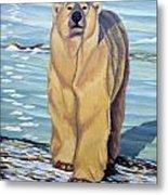 Curiosity - Polar Bear Painting Metal Print