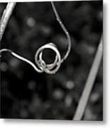 Curls And Swirls Metal Print