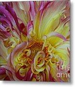 Curly Petals Metal Print