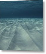 Current-sculpted Ripples In The Sandy Metal Print