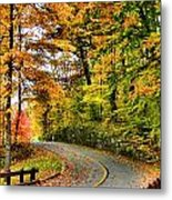 Curve In The Road Metal Print