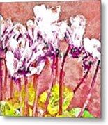 Cyclamen Watercolor Metal Print