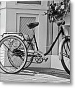 Cycle Metal Print