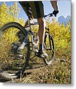 Cyclist Rides Mountain Bike Among Trees Metal Print