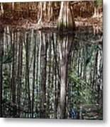 Cypress Swamp Reflections Metal Print