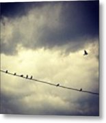 Da Birds Metal Print