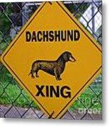 Dachshund Crossing Metal Print
