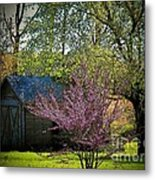 Daddys Old Shed In The Spring Metal Print by Joyce Kimble Smith