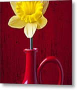 Daffodil In Red Pitcher Metal Print