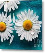Daisies Floating In Water Metal Print