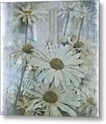 Daisy Blues Metal Print