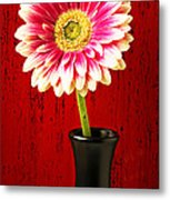 Daisy In Black Vase Metal Print
