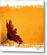 Daisy In The Yellow Corner Metal Print