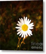 Daisy Is Single But Not Lonely  Metal Print